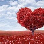 Frases bonitas para el amor